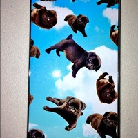 SWEET LORD O'MIGHTY! PUGS ON CLOUD9 IPHONE CASE