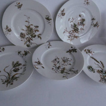 5 pc Haviland Limoges Plate Set Teal and Brown Plates
