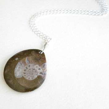 Fossil Ammonite Necklace, Nautilus Pendant, Sterling Silver Fossil Jewelry