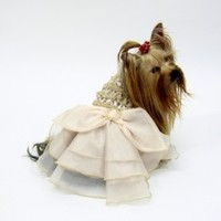 Dog Dog Collection Beige Color Jaiden Dog Wedding Gown | Pets Manic