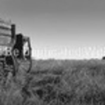 Window Graphic - 20x65 Wooden Wagon BW