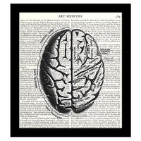 Brain Dictionary Art Print 8 x 10 Human Anatomy Victorian Medical Science
