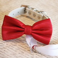 Red Dog Bow Tie ring bearer, Red Wedding, Christmas, Valentine day, Proposal idea