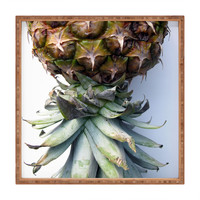 Deb Haugen Pineapple 2 Square Tray