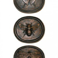 Anthropology Plaques - Set of 3 - Wall Sculptures - Wall Decor - Home Decor | HomeDecorators.com