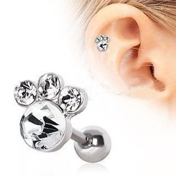 Animal Paw Cartilage Earring Gemmed Cartilage Piercing Animal Lover