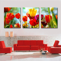 Natural Flowers Photos on Canvas Prints, Photo Gallery | CanvasChamp
