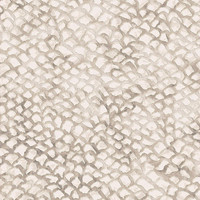 Dynamic Rugs Eclipse Ivory Modern Rectangle Area Rug