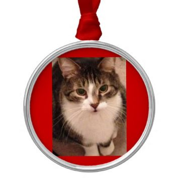 Cat Photo Metal Ornament