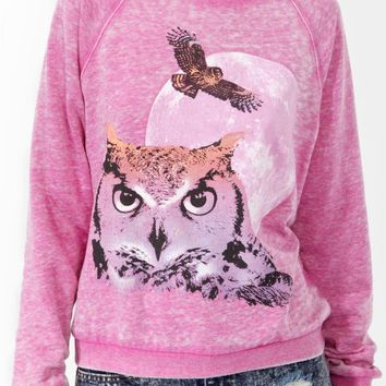 Ombre Owl Print Pullover