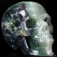 "HUGE 6.4"" Fluorite Carved Crystal Skull, Realistic"