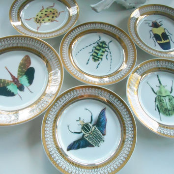 Gold Porcelain Bug/Insect Plate(s). PAYMENT OPTIONS AVAILABLE, Pick Your Own Bug! Discounts on Large Orders