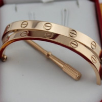 Cartier Couples Trending Women Men Love Bracelet Screw  A