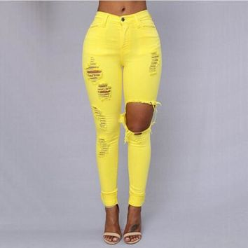 Echoine Skinny Holes Pencil Jeans Women Zipper Vintage Ripped Jean Femme Stretch Full Length Destroyed Pants 4 Colors