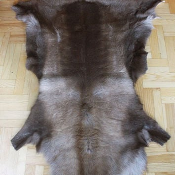 Exclusive RARE Genuine Natural rare Reindeer Skin - Rug, Hide, Pelt,  Extra Large XXXL