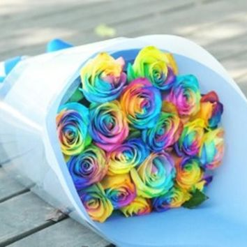 50pcs/pack 24 Varieties Rare Holland Rainbow Rose Flower Seed Rose seeds Free Shipping