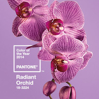 Pantone Color of the Year 2014: Radiant Orchid - Design Milk