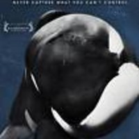 NEW - Blackfish