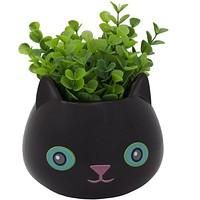 Fine Feline Flower Pot - Black Cat