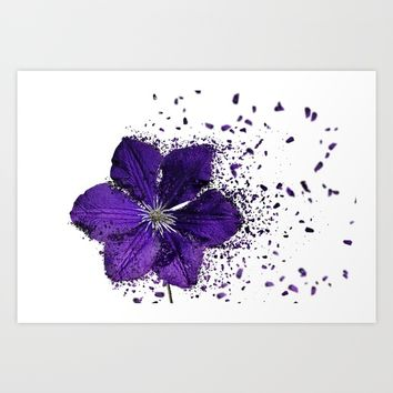 Purple flower Explosion Art Print by Claude Gariepy