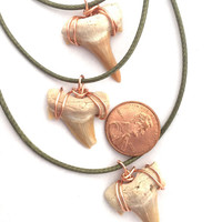 Discount 3 Pack Shark Tooth Necklaces / Kid Gift, Surfer Gift, Boy Gift / SharkTooth Necklace / Shark Tooth Pendant / Shark Fossil Jewelry