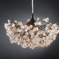 Ceiling lamp. Transparent flowers.
