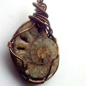 Ammonite Pendant, Mens Pendant, Fossil Pendant, Bronze Wire Wrap. Ammonoidea Pendant, South Africa, Men's Chain, Geologic Pendant