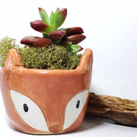 Fox Planter Ceramic Cutest Plant Container Perfect Gift READY TO SHIP