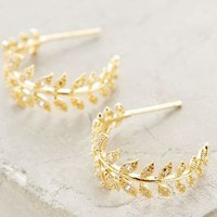 Feathered Frond Hoops by Anthropologie in Gold Size: One Size Earrings