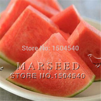 10 Seedless watermelon Seeds sweet& juice very tasty easy-growing tropical fruit seeds for planting edible