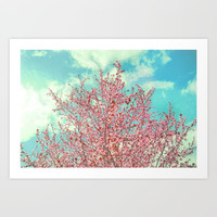 Pink flowers in the early morning Art Print by Guido Montañés