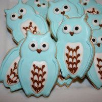 Owls blue and brown 1 dozen cookies