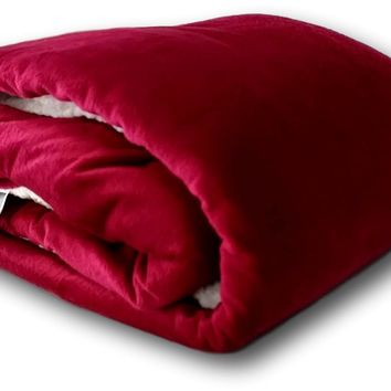 Tache Holiday Red Microfleece with Sherpa Back Throw Blanket (HRDMF)