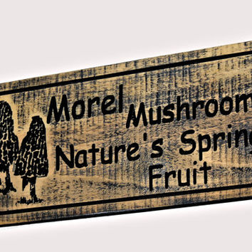 Morel Mushroom's Wood Sign - Carved Mushroom's Sign - Custom Wood Sign - Engraved Morel Sign