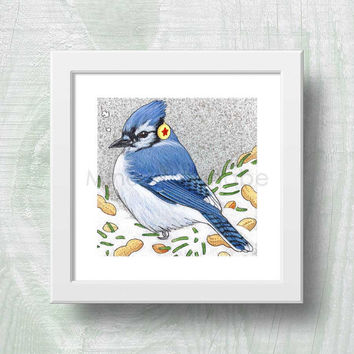 Blue Jay 2 - Winter Bird Series Illustration - Winter, Holiday, Christmas Theme - Birds Art - 8 x 8 Print - Fine Art Print - Wall Art