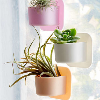 Tooletries Silicone Succulent Wall Planter | Urban Outfitters
