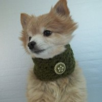 Dog scarf hand crocheted green cowl neck warmer with vintage button