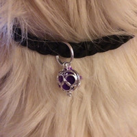 Dog Cat Essential Oil Diffuser ~ Aromatherapy Locket ~ Animal Diffuser ~ Natural Flea and Tick Prevention ~ Cat Collar ~ Dog Collar