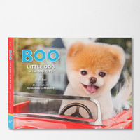 Urban Outfitters - Boo: Little Dog In The Big City By J.H. Lee