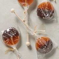 Salted Caramel & Dark Chocolate Lollipops by Anthropologie in Salted Caramel Chocolate Size: Set Of 4 House & Home