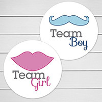 """2"""" Gender Reveal Stickers, Team Boy and Team Girl Stickers - New Design (#119N)"""