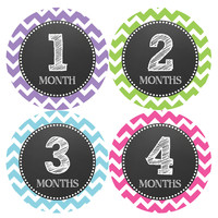 Baby Girl Monthly Milestone Birthday Stickers Style #071