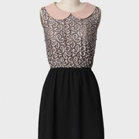 tea and crumpets lace dress at ShopRuche.com