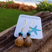 Gorgeous Pearl and Hawaiian Sunrise Shell Earrings