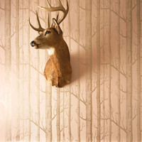 Cole & Son Wallpaper The Woods Gold & Dusky Pink