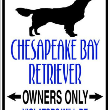 Design With Vinyl Design 636 Parking for Chesapeake Bay Retriever 9 X 18 Vinyl Wall Decal Sticker