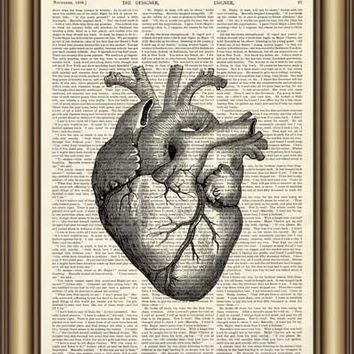 Dictionary Art Print Printed On Authentic Vintage Dictionary Book Human Eye