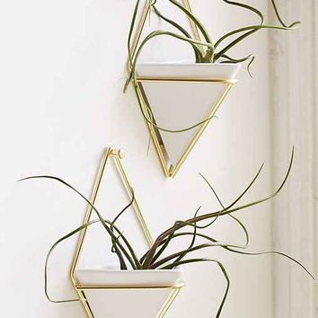 Umbra Trigg Wall Planter Set