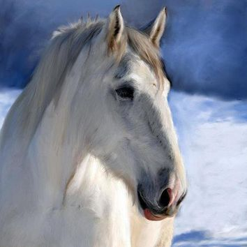 Horse In Winter Landscape - Art Print 266
