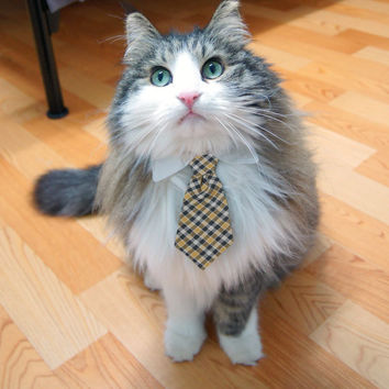 Pet Dog Cat Collar ACCESSORY Necktie by fingerstory on Etsy